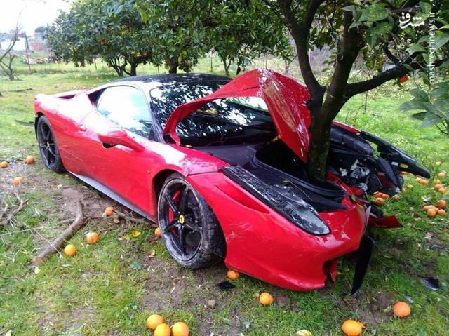 تصادف فراری با درخت پرتقال! +عکس