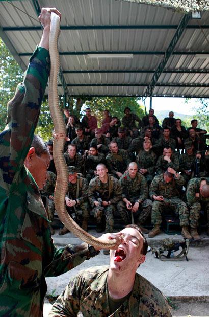 عکس: سربازان خون آشام! - www.iranday.net