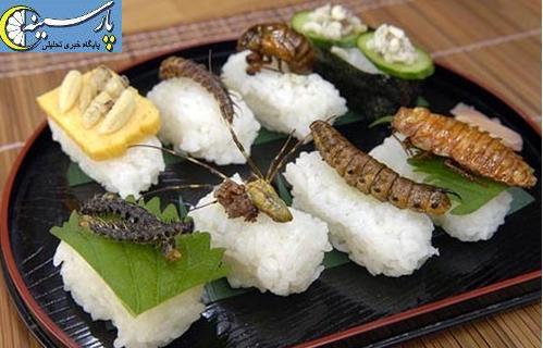 عکس غذا کره ای