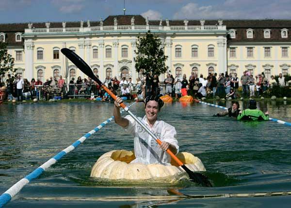 عکس   فستیوال کدو تنبل در آلمان