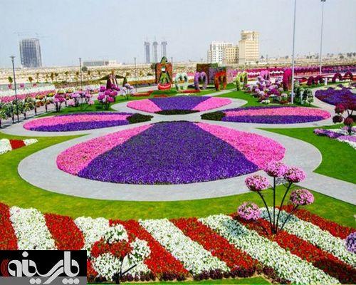 فستیوال گل