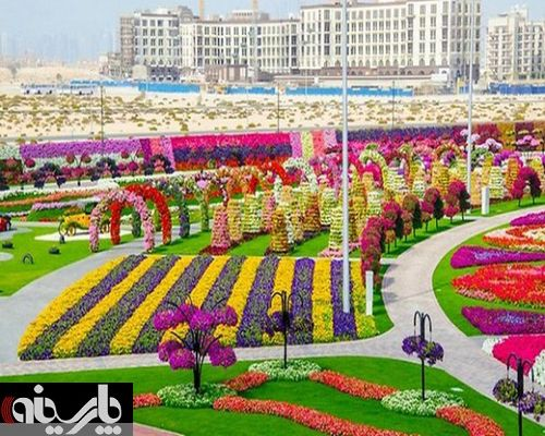 فستیوال گل در دبی با 45 میلیون گل