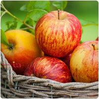 ۳۰خوراکی اصلی ضد سرطان را بشناسید