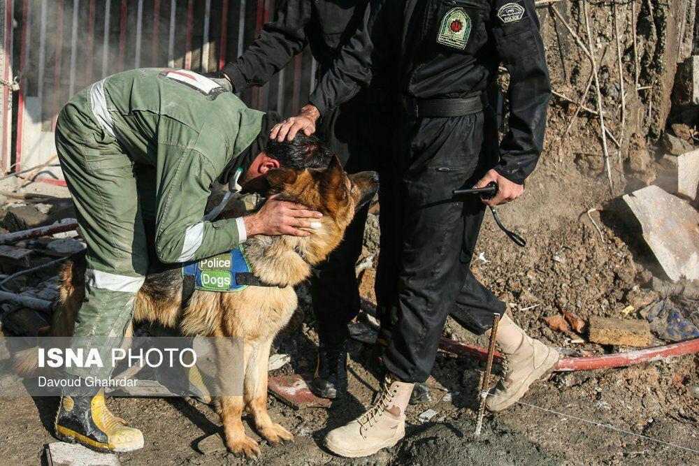تشکر مامور آتشنشانی از سگ زندهیاب به خاطر پیداکردن پیکر دوستانش+عکس