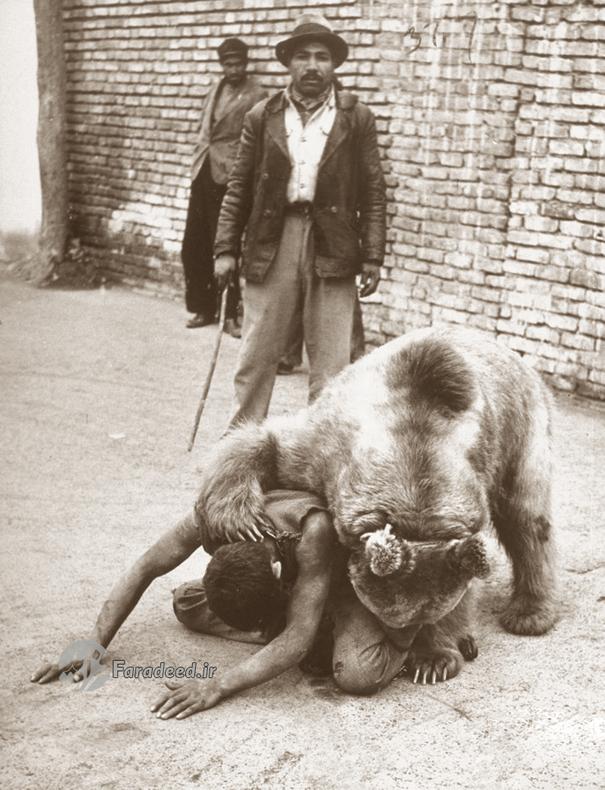 معرکهگیری با خرس در تهران قدیم +تصاویر