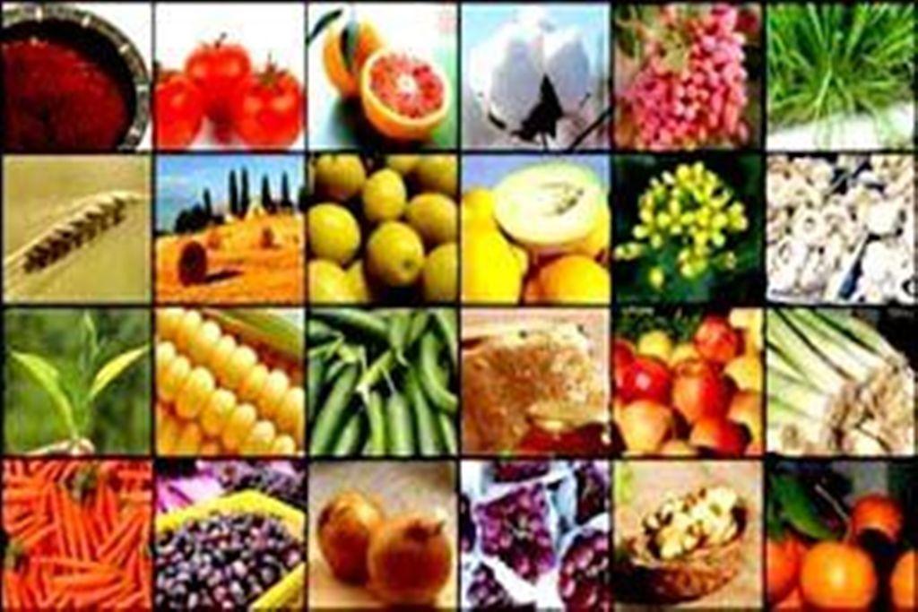 تیر خلاص نفوذیها برای امنیت غذایی مردم!