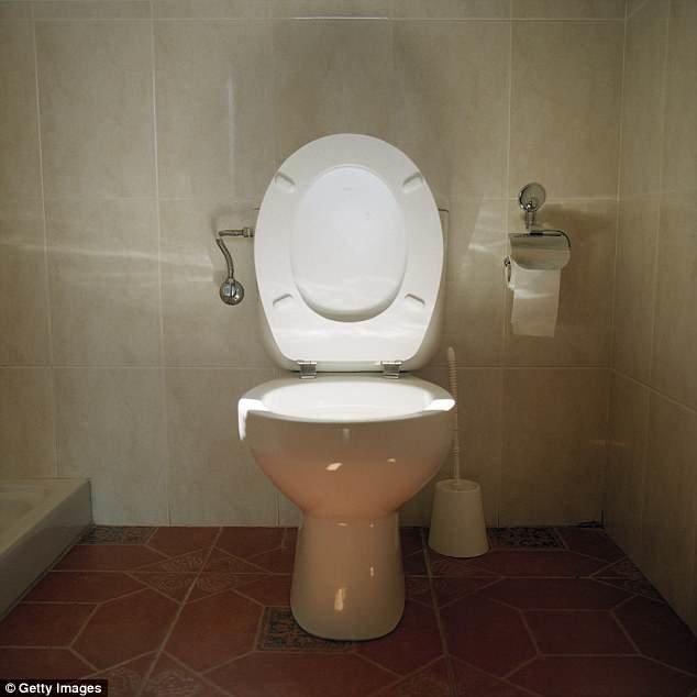 اون توالتش را هم به سنگاپور برده بود!+عکس