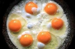 12 فایده تخم مرغ برای بدن