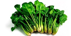 این سبزی مانند بوتاکس عمل میکند
