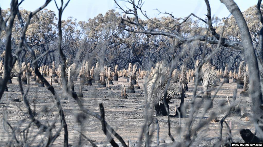 دهه میلادی ۲۰۱۰ گرمترین دهه ثبت شده در روی زمین