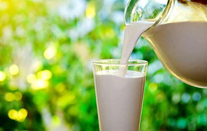میزان اندکی سم «آفلاتوکسین» در شیر وجود دارد / مصرف شیر را جدی بگیرید