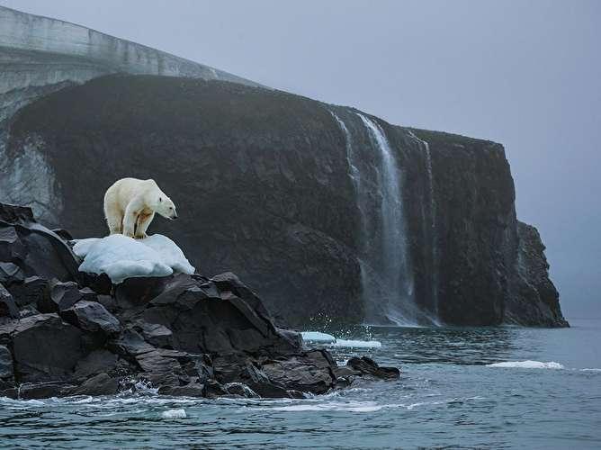 مرز «۲۱» درجه ! محققان، گرمترین دمای قطب جنوب را ثبت کردند