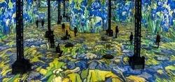 تجربه هیجان انگیز غرق شدن در نقاشیهای ون گوگ! + تصاویر