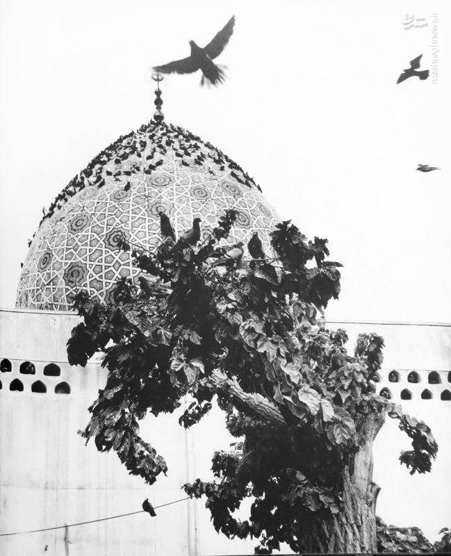 تصویر دیده نشده از امامزاده صالح در دهه ۴۰