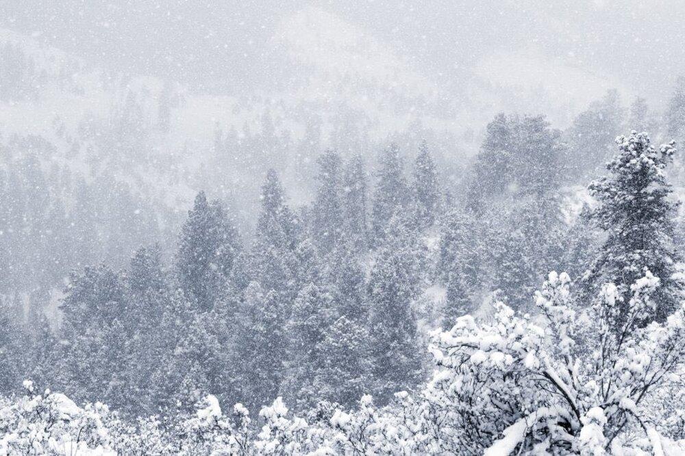 بارش برف تابستانی در یکی از ایالتهای آمریکا! +تصاویر