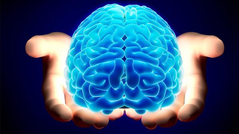 چه چیزی فعالیت مغز را مختل میکند؟