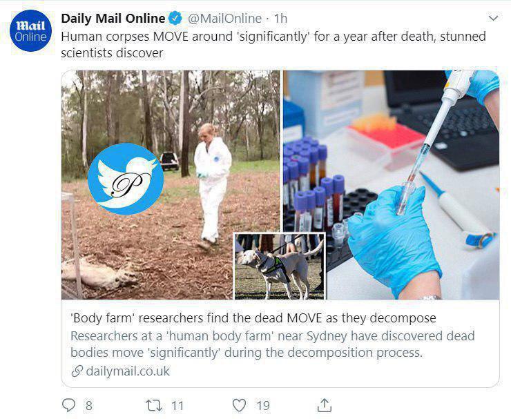 محققان می گویند جسد انسان یک سال بعد از مرگ راه می رود! +عکس