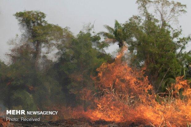 آتش سوزی مراتع در سالندکوه دزفول مهار شد