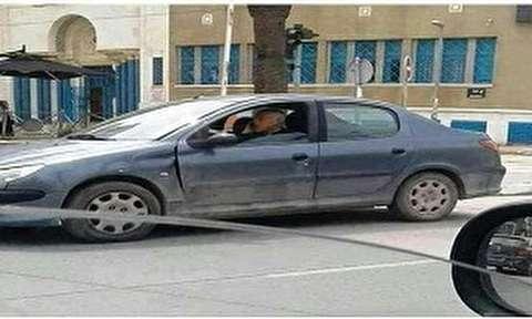 رانندگی رئیسجمهور تونس با ۲۰۶ صندوقدار ایرانی!