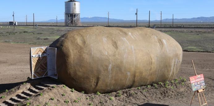 این سیبزمینی است یا خانه؟! +تصاویر