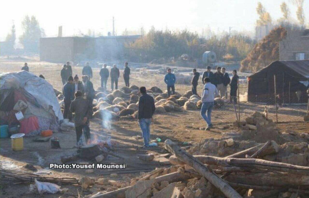 کار جالب اهالی روستای زلزلهزده اسب فروشان سراب+عکس