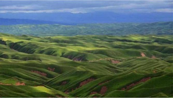ترکمن صحرا(خالد نبی) کجاست؟+عکس