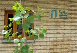 مخالفت آیتالله مکارم شیرازی با روش خانه سینما در تخصیص کمک معیشتی+ عکس