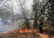 شناسایی عامل آتش سوزی در ارتفاعات خاییز