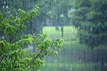 رشد ۳۰ درصدی بارش نسبت به دوره بلندمدت؛ ۱۲۰ درصد بارش یکسال زراعی تامین شد