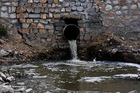 مرگ ماهیان رودخانه قره سو