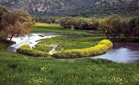 طبیعت بهاری روستای هنام - لرستان
