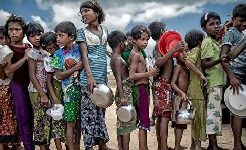 برگزیدگان مسابقه عکاسی غذا در سال ۲۰۲۰