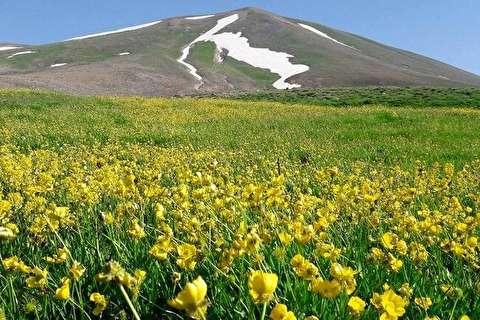 عروس کوههای ایران