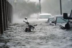 آمریکا گرفتار طوفان؛ «سالی»