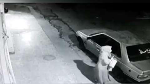 سرقت وحشیانه ۳مرد مسلح از یک زن در دزفول + فیلم