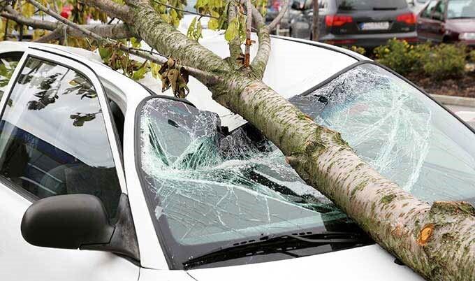 خسارت افتادن درخت یا حوادث طبیعی برای انواع خودرو و اتومبیل با بیمه بدنه قابل جبران است.
