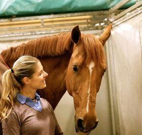 آدلینا کورنیسون، سوارکاری که رویاهای المپیک خود را به خاطر اسبش از دست داد. این اسبسوار هلندی به علت بیماری
