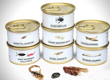 کنسرو خوراکی حشرات مرده تولید کننده این محصول گفت:بسیاری از مردم در مناطق مختلف دنیا از خوردن حشرات لذت می برند به همین دلیل ما تصمیم گرفتیم چند نوع کنسرو حشره تولید کنیم. ملخ پنیری، کرم بامبو کبابی، جلبک دریایی، مورچه های شور، خامه ترش و سوسک چند نمونه از این کنسرو ها هستند.