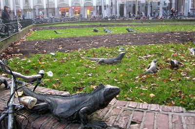 «پارک ایگوانا»، آمستردام، هلند